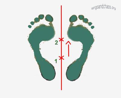 feetwtfwdW