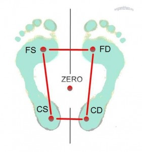 feet2Wro